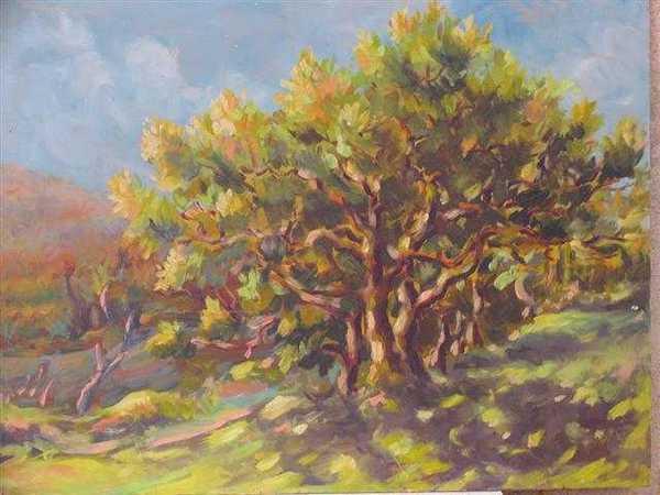 Le vieux chêne (peinture à l'huile) – support carton encadré (44 x 55 cm) – 480 €